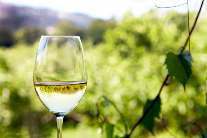 El 'gran público' avala el éxito de los vinos de la DO Rueda