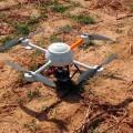 VIÑAS DEL VERO DRONES VENDIMIA 14