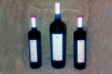 Viña Moraima presenta su primer tinto, hecho con la varietal Caíño