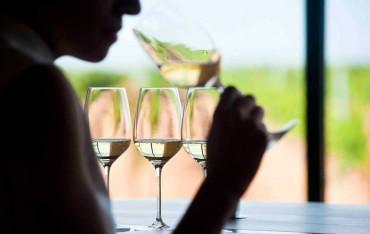 Rutas de vino accesibles para todos los sentidos