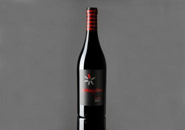 Mucho que decir con viñas viejas de Bobal. Cerrogallina