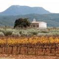 El Cabernet Sauvignon de las tierras de 'tapaç'. Bodegas y Viñedos Barón d'Alba, Clos d'Esgarracordes, stylusvinum, www.globalstylus.com