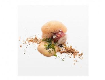 Los vinos de Ribeira Sacra se catarán con pescados en el Fórum Gastronómico Coruña