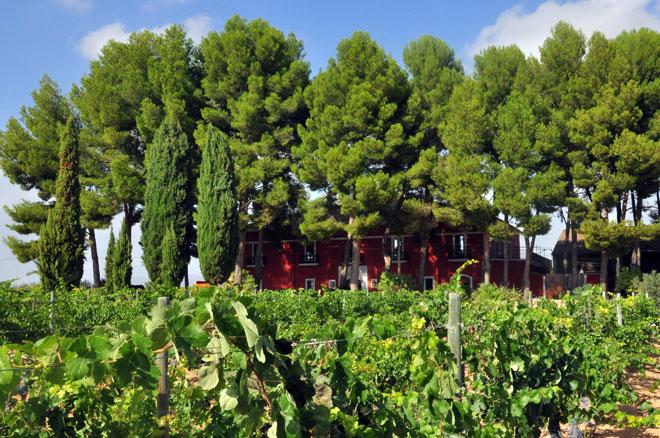Dominio de la Vega presenta su gama de vinos 'Selección'