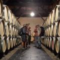 El Cavino de Santiago, una peregrinación de bodega en bodega a lo largo del Camino, www.globalstylus.com, www.stylusvinum.com,