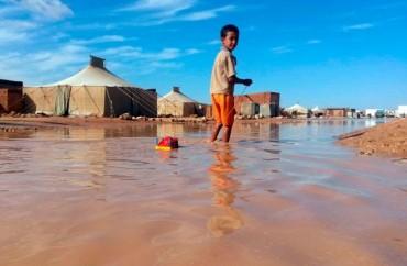 Emergencia en los campamentos de refugiados saharauis
