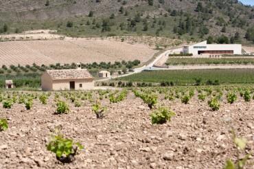 Ligero equipaje para llegar más lejos. MG Wines, Bodegas Sierra Salinas