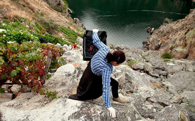 De entre las rocas. Cividade, Adega Verao, Ribeira Sacra