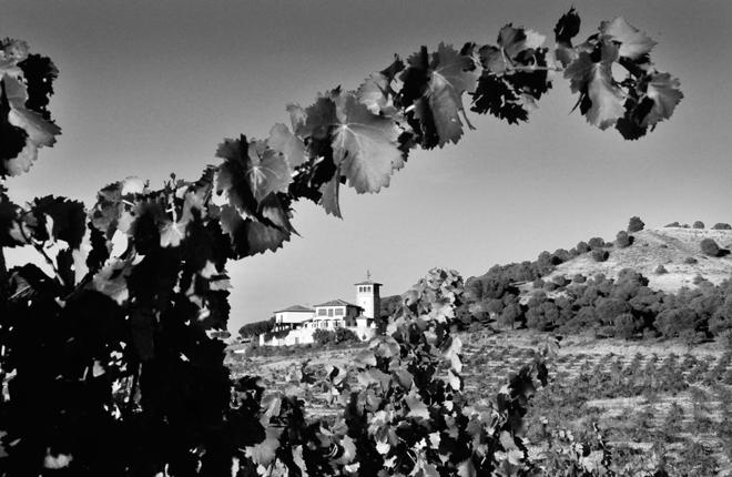 Estancia Piedra. En la senda del 'vino natural'