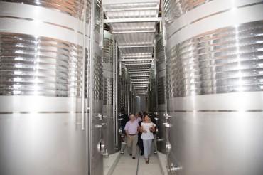 La Cooperativa de Godelleta especializada en vinos de Moscatel actualiza su tecnología con 1'8 millones de Euros