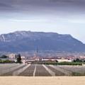 1--Bodegas-Paternina,-Nuevo-viñedo-varietales-blancas