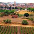 Viñedos-Rueda--Foto-CRDO-Rueda---StylusVinum
