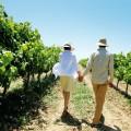 Roses, la escapada ideal a la Ruta del Vino DO Empordà