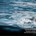 Making Waves, Volvo Ocean Race certamen de arte y música joven