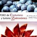 I Foro de Enoturismo y Turismo Gastronomico, Ronda, globalstylus