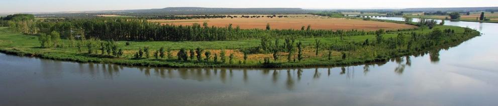 Un tinto entre especies protegidas. Barcolobo, Finca La Rinconada, www.globalstylus.com www.stylusvinum.com