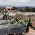 El vino vuelve a la montaña. Rubus Quercus, Bodega Jesús Romero, Rubielos de Mora, STYLUSVINUM, WWW.GLOBALSTYLUS.COM