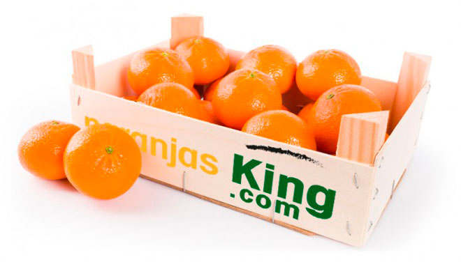 10 cosas que probablemente no sabes de las naranjas, www.globalstylus.com