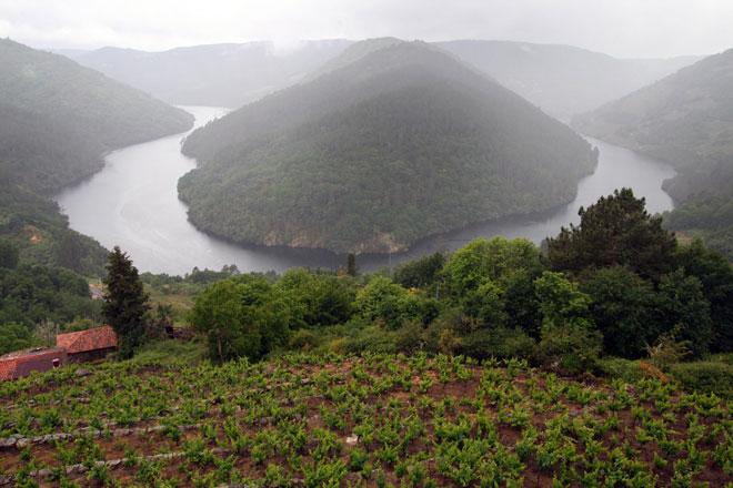 Vino, carne y queso, la Ribeira Sacra de gira por España con 'Sabores de Galicia'
