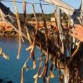 peix sec Formentera