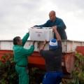 El futuro es de los valientes. Caprasia Rosé, Vegalfaro Viñedos & Bodegas, ww.globalstylus.com, www.stylusvinum.com,