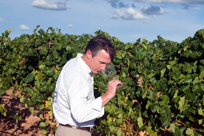Las mil y una formas de participar en la vendimia de la Ruta del Vino de Rueda, https://globalstylus.com/