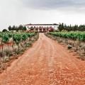 El primero en la escena de los Vinos de Pago. Finca Elez, www.globalstylus.com