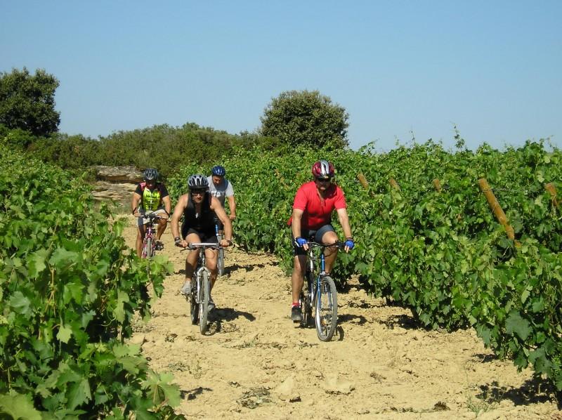 Claves para descubrir Laguardia, epicentro de la Rioja Alavesa