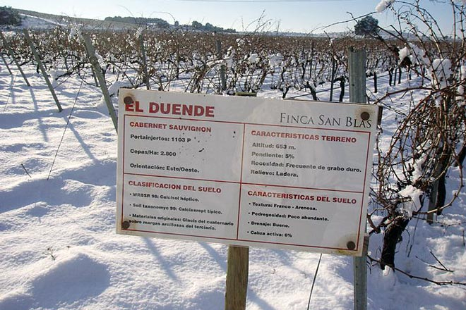 "El dulce botritizado Finca San Blas proclamado ""Platinum Best in Show"" en los Decanter World Wine Awards"