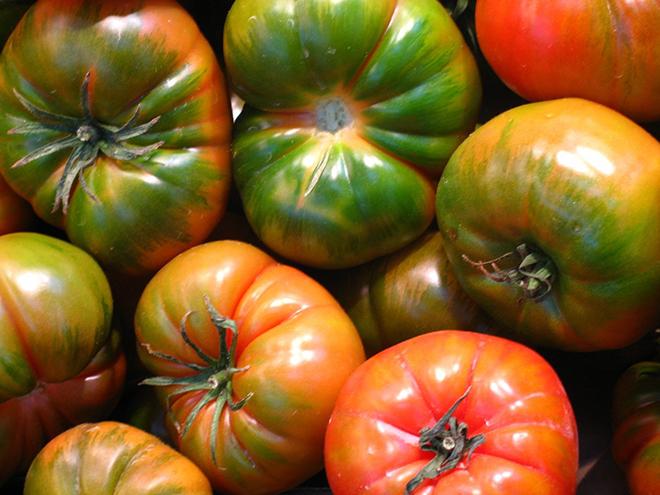 Vuelve la Feria Gastronómica del tomate de El Perelló