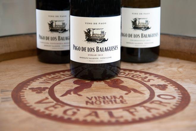 Элегантный и привлекательный Сира. Па́го Лос Балагесес, виноградники и винодельни Вегалфаро
