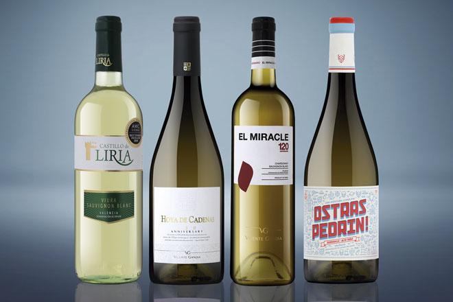 Ya podemos disfrutar de la nueva añada de vinos jóvenes de Vicente Gandía