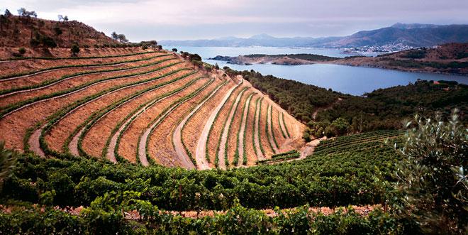 Equilibrio en vinos del Mediterráneo. Castillo Perelada