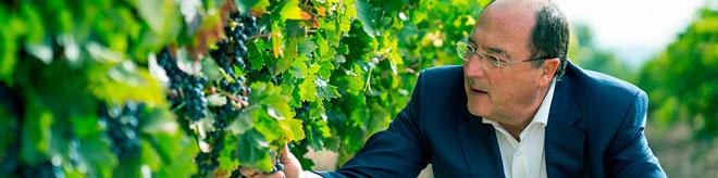 Bodega Carlos Moro presenta en sociedad su primer vino de Rioja