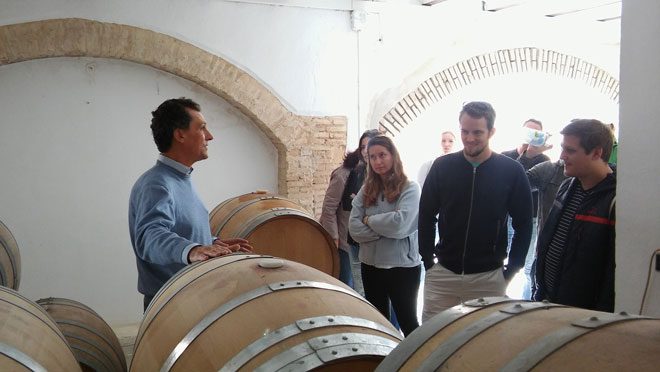 wine-tour-utiel-vineyards-vera-estenas(3)