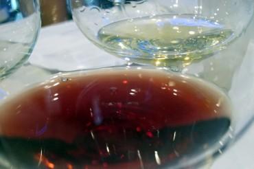 Los vinos de la DO Valencia baten un nuevo record con 53 sobresalientes en la Guía Peñín 2021
