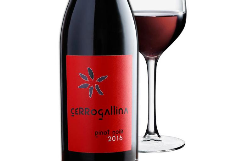 Probamos el fresco, frutal y ligero Cerrogallina Pinot Noir, que viene a unirse a su homónimo de Bobal, de marcados taninos y gran carga frutal