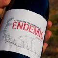 Endemic, Ferrer-Gallego et al. Vino natural con fundamento. GlobalStylus.com