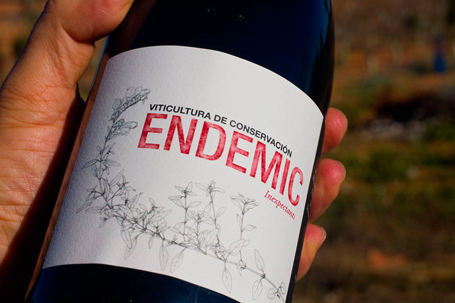 Endemic, Ferrer-Gallego et al. Vino natural con fundamento