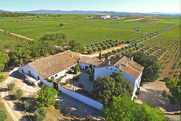 La Finca Hoya de Cadenas, de Bodegas Vicente Gandía / foto: B. V. Gandía