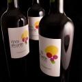 vinos-alicante-DOP-bot-logo