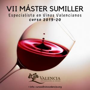 BANNER VII MASTER DO Valencia