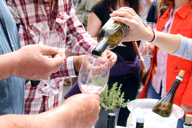 Fin de semana de vinos DO Valencia en la I Fira del Vi de Gandía