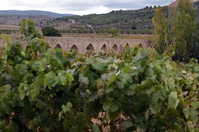 Valencia Ruta del Vino, nuevo producto enoturístico de la Comunitat Valenciana