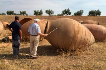 GOVALMAVIN avanza en la investigación sobre la crianza de vinos en tinajas junto con la DO Valencia