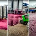 Revienta depósito de vino tinto