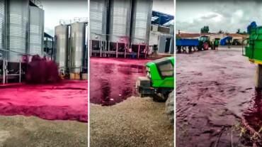 El vino escapa de un depósito de 50.000 litros