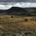 La pureza del Alto Turia. Baldovar 923, Rascaña