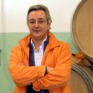 Luis Delgado Sanz, Luma, el cénit de Bodegas Los Astrales