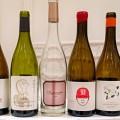 Los vinos de la DO Valencia conquistan al público profesional en Málaga